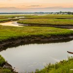 green-marsh